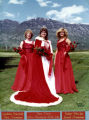 Pam Davis Miss American Fork  1983  (left to right) 1st Attendant, Gayliene Crawford, Pam Davis,...