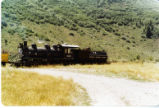 Wasatch Mountain Railway Number 100.