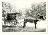 Group in Horse-Drawn Covered Wagon.