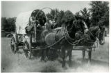 Covered wagon drawn by horses, Fillmore's Utah Centennial Celebration, 1847-1947